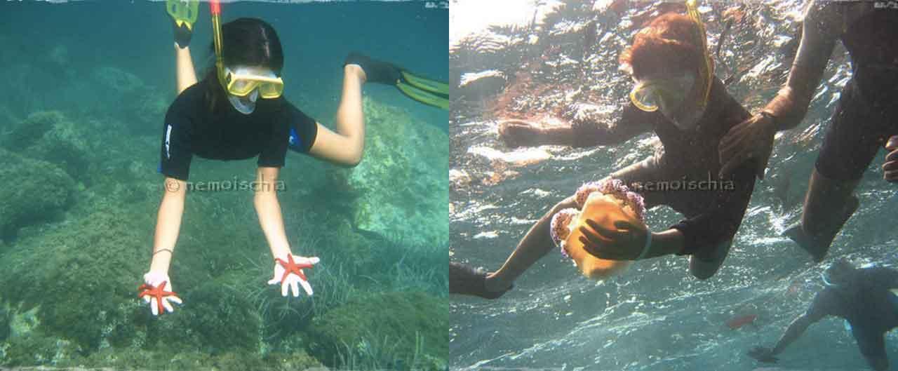 snorkeling sull'isola di ischia